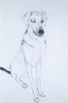 "Diesel, 2002, Graphite on paper, 58"" x 38"""